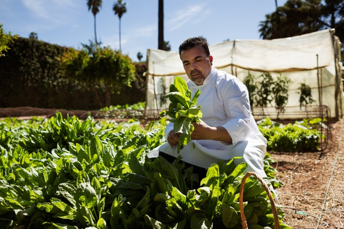 Chef Rachid in the Vegetable Garden, La Mamounia Hotel, Marrakech, Morocco. Photo by Alan Keohane www.still-images.net for La Mamounia