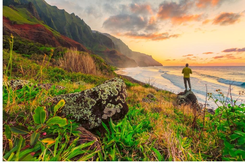 hawaii-839801_1920.jpg